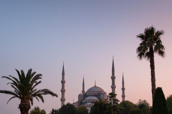 Palm trees and the minarets of the Blue Mosque rise up into a pastel pink and blue sky at sunset in Istanbul, Turkey