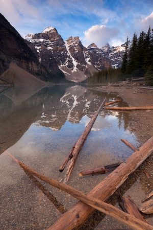 Fallen logs reach out into a glassy Moraine Lake that is reflecting perfectly the snow capped mountains on the other end of the lake.