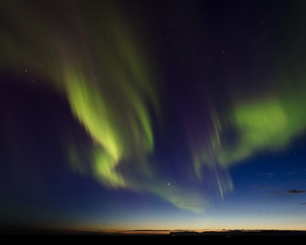 Green curtains of aurora borealis mingle with the blue hour in Iceland.