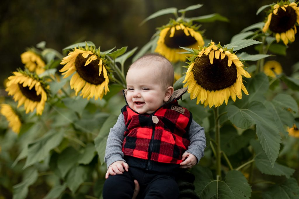 A baby boy wearing red and black buffalo plaid laughs amidst a field of sunflowers in bath new hampshire.