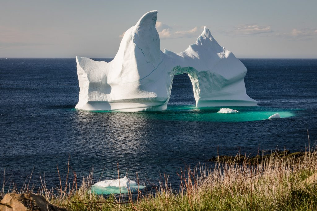 A massive iceberg in Grates Cove along iceberg alley in newfoundland