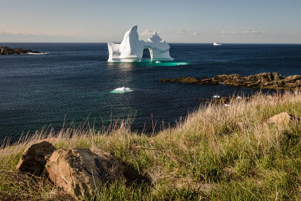 An iceberg in iceberg alley in Grates Cove newfoundland