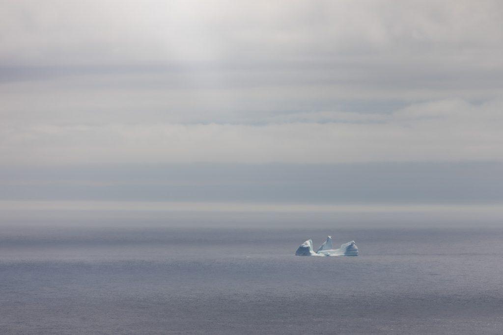 An iceberg off the coast of St. Johns newfoundland